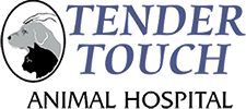 Tender Touch Logo